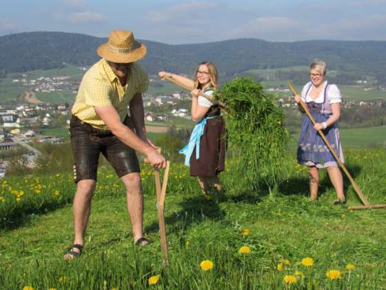 Beste Spielothek in Ulrichsberg finden