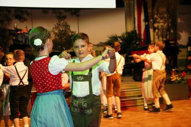 Bezirk Rohrbach präsentierte sich beim Ball der OÖ von seiner musikalischen Seite - Bild 38