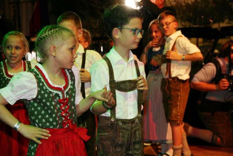 Bezirk Rohrbach präsentierte sich beim Ball der OÖ von seiner musikalischen Seite - Bild 39