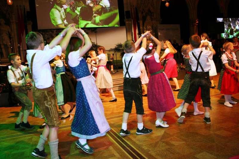 Bezirk Rohrbach präsentierte sich beim Ball der OÖ von seiner musikalischen Seite - Bild 44