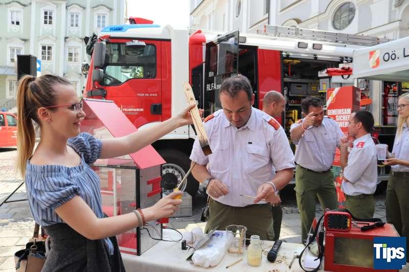 Land OÖ sagte Danke: Erstermals Ehrenamtstag vor und im Landhaus gefeiert - Bild 29