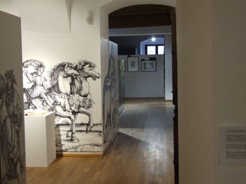 Rundgang durch die Maximilian-Ausstellung - Bild 7