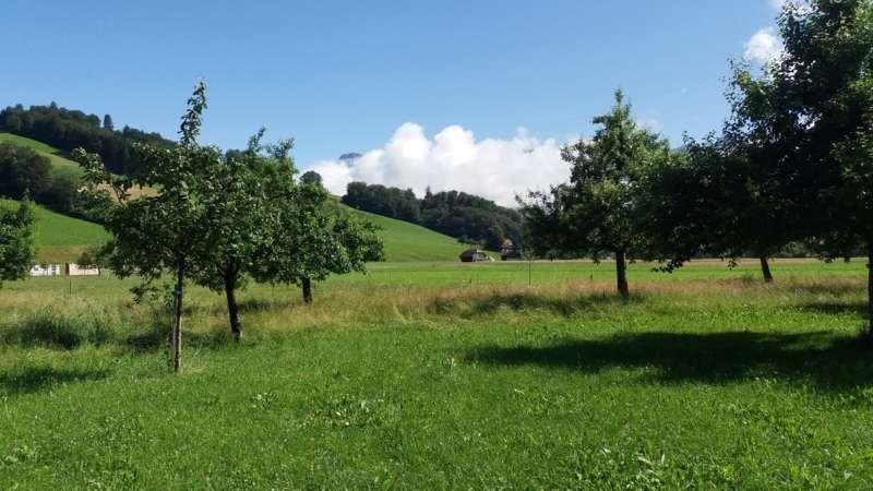 Agrarreise Schweiz mit Landesrat Max Hiegelsberger - Bild 23