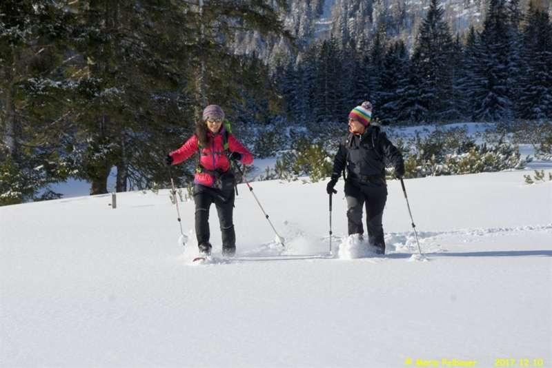 Bergparadies Warscheneck - Mit Schneeschuhen die Winteridylle am Teichelboden erleben - Bild 1