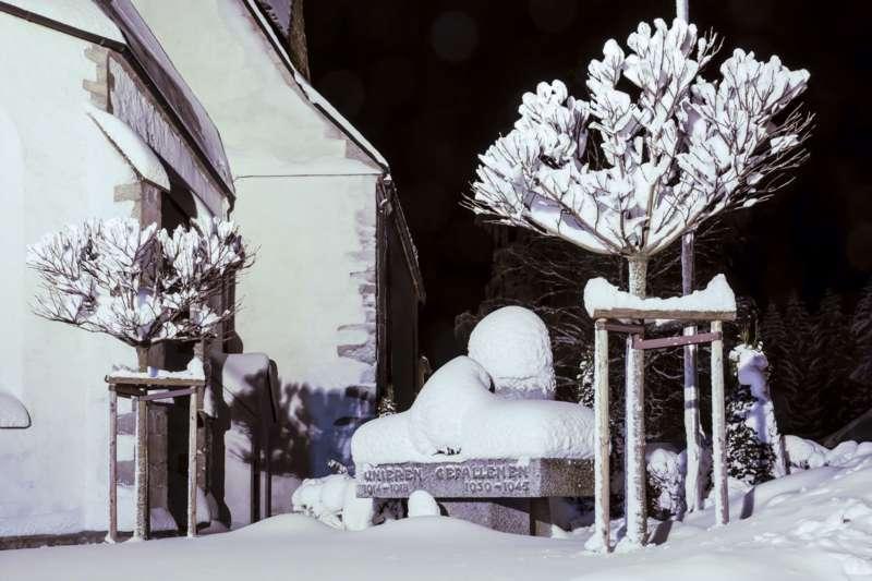 Winternachtfotos aus St. Georgen am Walde und Königswiesen - Bild 23