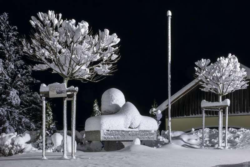Winternachtfotos aus St. Georgen am Walde und Königswiesen - Bild 25