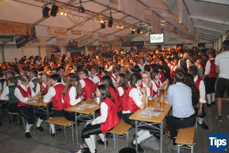 Bezirksmusikfest 2017 in Steinbach am Ziehberg - Bild 61