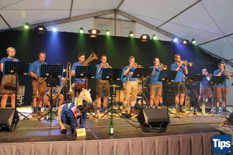 Bezirksmusikfest 2017 in Steinbach am Ziehberg - Bild 62