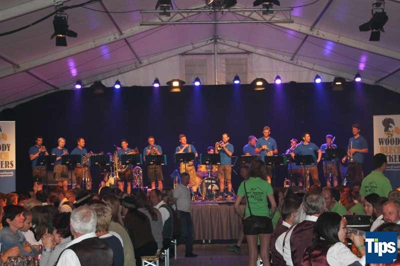 Bezirksmusikfest 2017 in Steinbach am Ziehberg - Bild 66