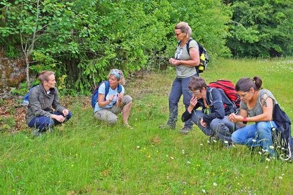 Stoahoat & duftend wild - Bild 1615279844