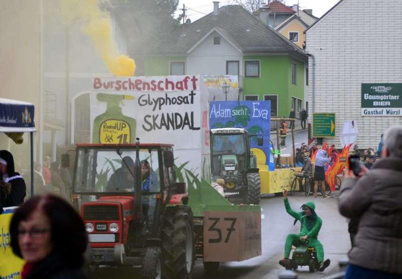 Faschingsauftakt in Eberschwang - Bild 5