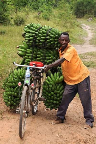 Multimediashow OSTAFRIKA (Kenia, Uganda, Tansania, Sansibar) - Bild 1425839470