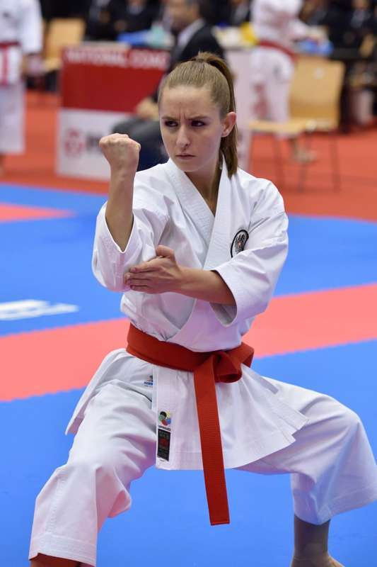 Karate Wm Linz
