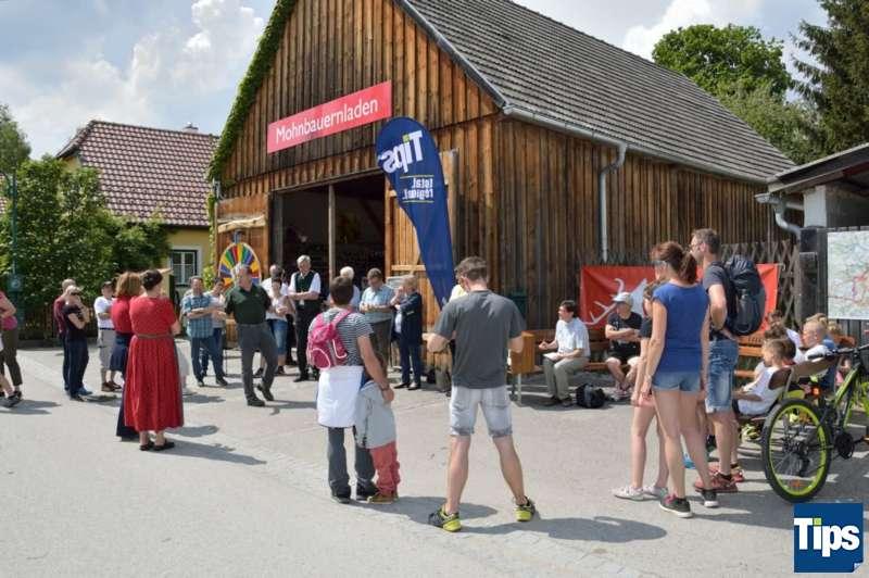 """""""Filmpremiere"""" am Wanderweg: Erster Narrnkastl-Wanderweg eröffnet - Bild 22"""