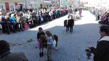 173. Pferdemarkt in Obernberg am Inn (samt Innviertler Biermärz)