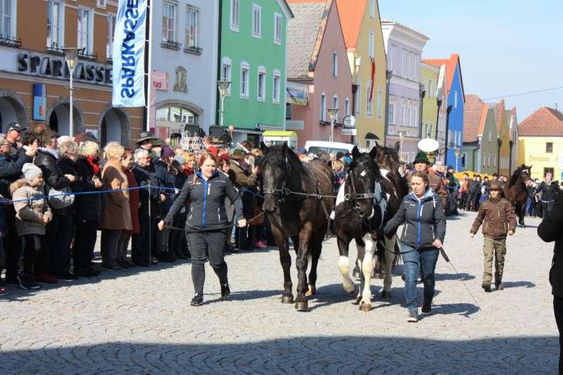 173. Pferdemarkt in Obernberg am Inn (samt Innviertler Biermärz)  - Bild 1521896639