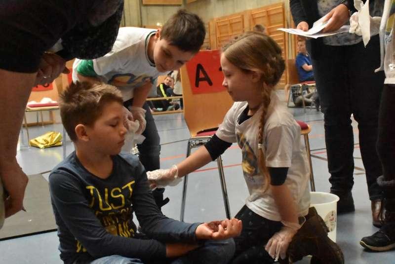 Helfi-Bezirkswettbewerb in der Volksschule Schönau - Bild 9