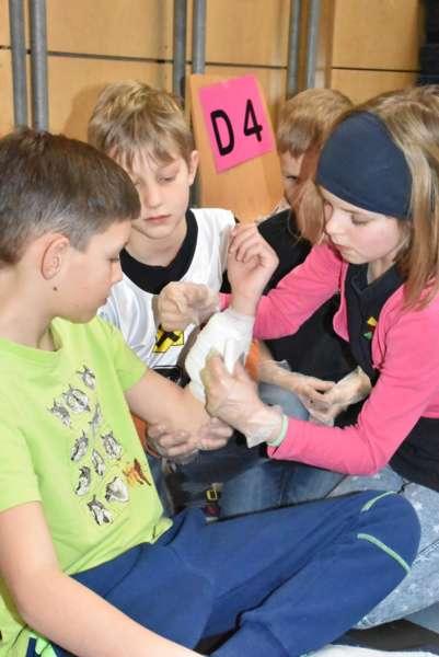 Helfi-Bezirkswettbewerb in der Volksschule Schönau - Bild 11