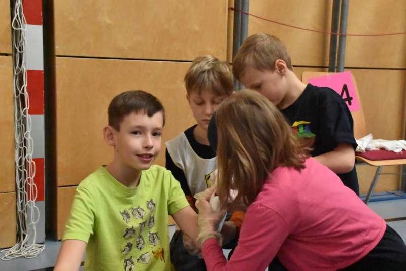 Helfi-Bezirkswettbewerb in der Volksschule Schönau - Bild 18