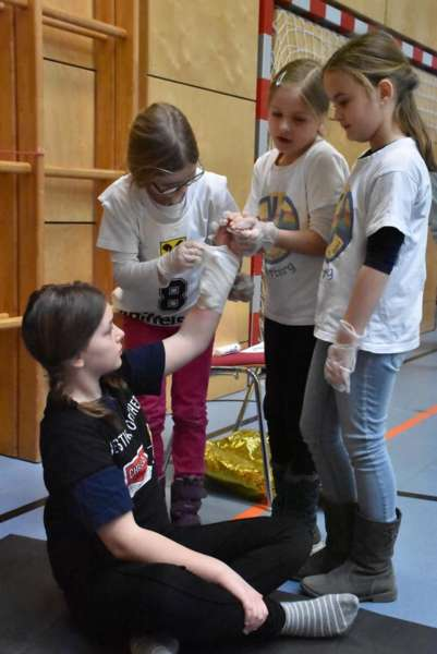 Helfi-Bezirkswettbewerb in der Volksschule Schönau - Bild 22
