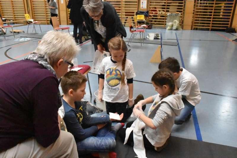Helfi-Bezirkswettbewerb in der Volksschule Schönau - Bild 29