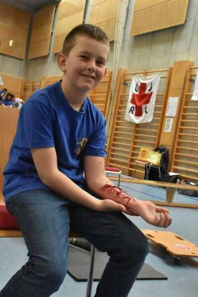Helfi-Bezirkswettbewerb in der Volksschule Schönau - Bild 35