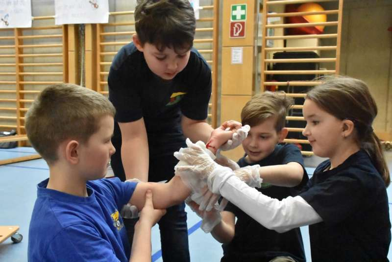 Helfi-Bezirkswettbewerb in der Volksschule Schönau - Bild 42