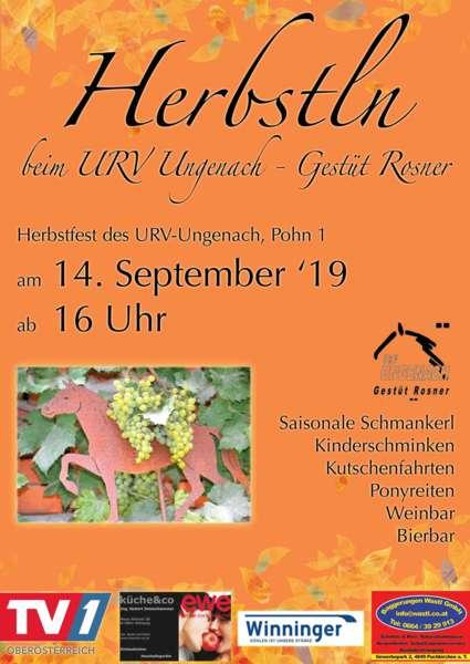 Herbstfest des URV-Ungenach - Bild 2
