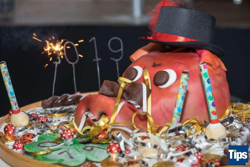 Neujahrsempfang Stadtgemeinde Freistadt mit Bürgermeisterin Paruta-Teufer - Bild 68