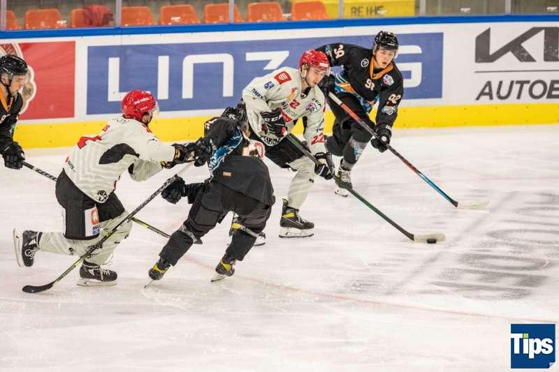 STEEL Wings vs HDD SIJ Acroni Jesenice - Bild 38