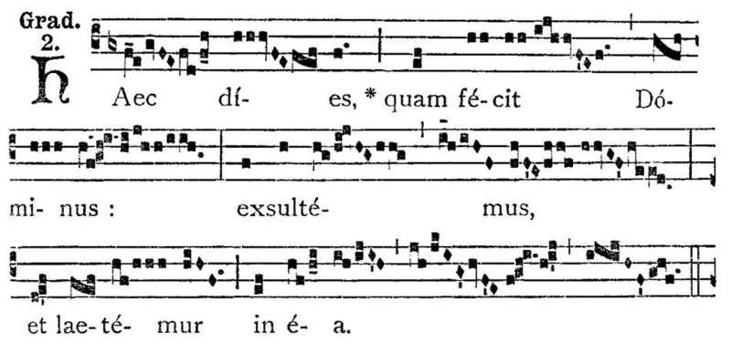 Schlägler Gregorianik-Werkstatt IV -  Lernort der Spiritualität - Bild 1