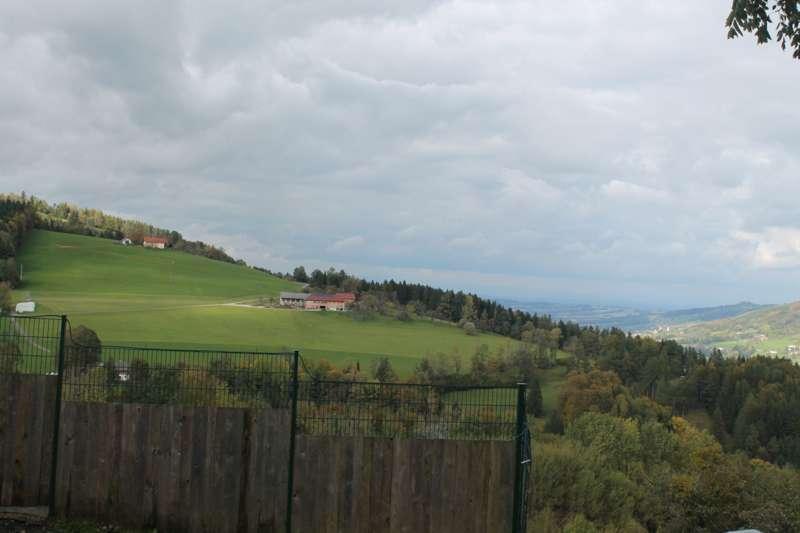 Tag der offenen Tür im Tierparadies Schabenreith in Steinbach am Ziehberg - Bild 7