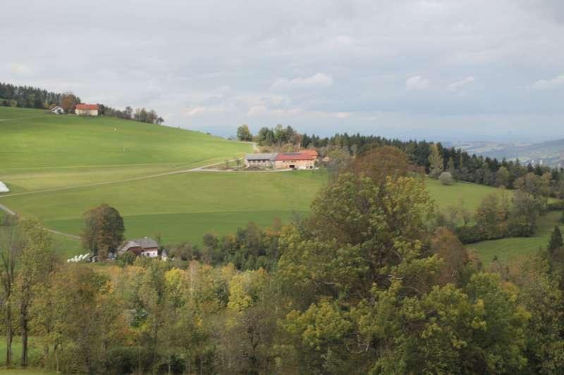 Tag der offenen Tür im Tierparadies Schabenreith in Steinbach am Ziehberg - Bild 15