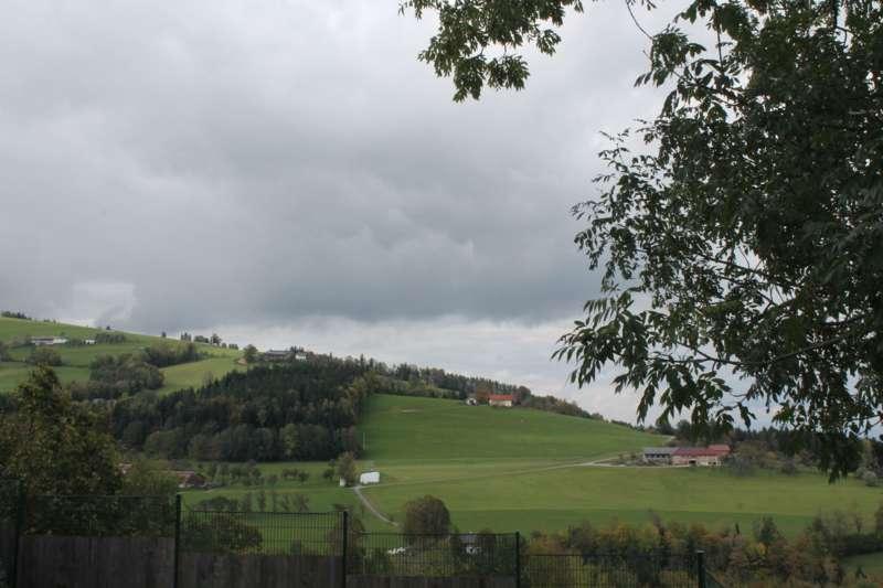 Tag der offenen Tür im Tierparadies Schabenreith in Steinbach am Ziehberg - Bild 18