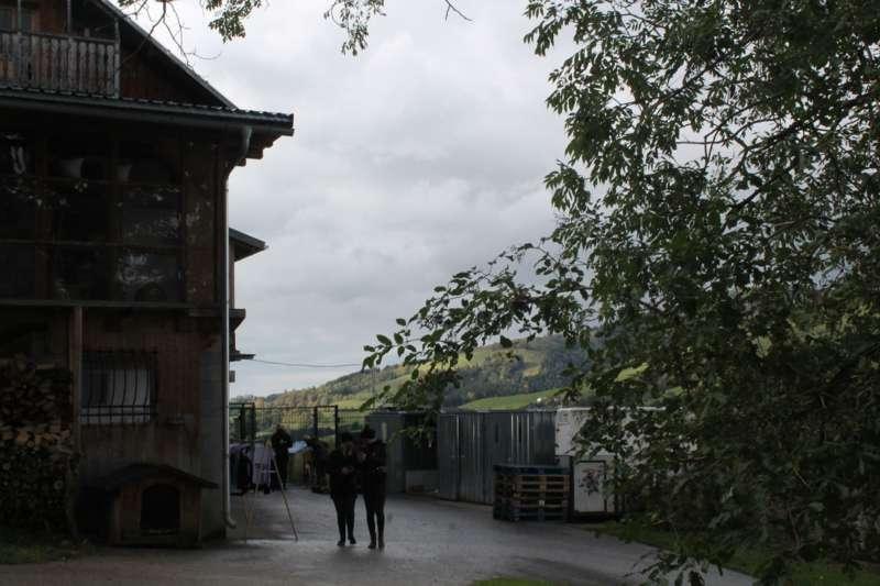 Tag der offenen Tür im Tierparadies Schabenreith in Steinbach am Ziehberg - Bild 19