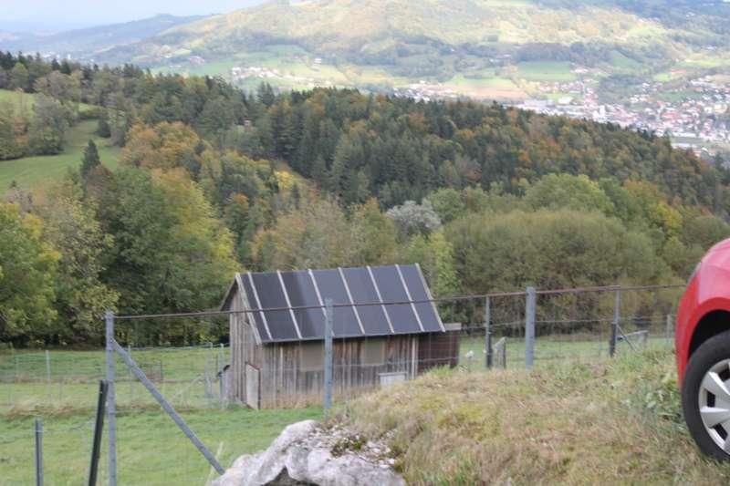 Tag der offenen Tür im Tierparadies Schabenreith in Steinbach am Ziehberg - Bild 22