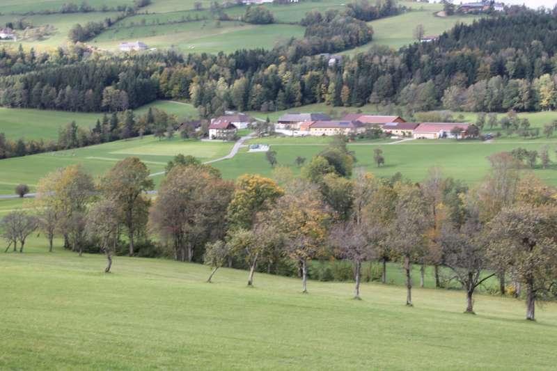 Tag der offenen Tür im Tierparadies Schabenreith in Steinbach am Ziehberg - Bild 30