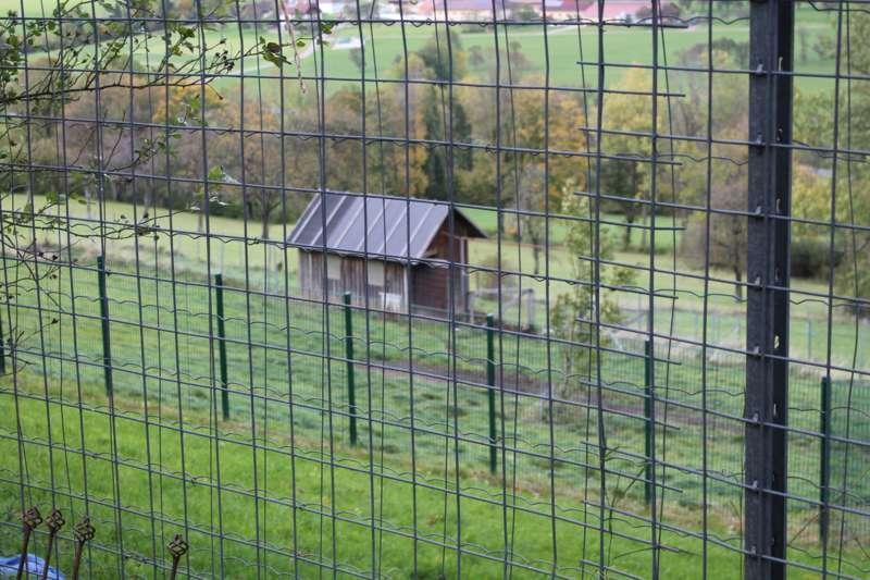 Tag der offenen Tür im Tierparadies Schabenreith in Steinbach am Ziehberg - Bild 31