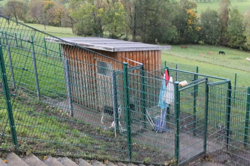 Tag der offenen Tür im Tierparadies Schabenreith in Steinbach am Ziehberg - Bild 42