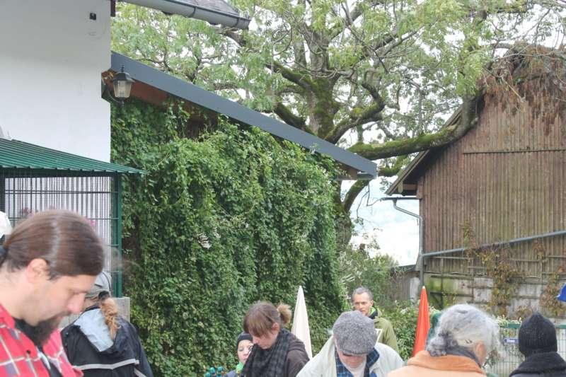 Tag der offenen Tür im Tierparadies Schabenreith in Steinbach am Ziehberg - Bild 44