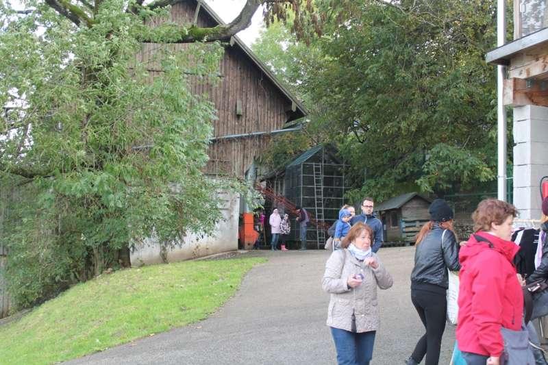 Tag der offenen Tür im Tierparadies Schabenreith in Steinbach am Ziehberg - Bild 46