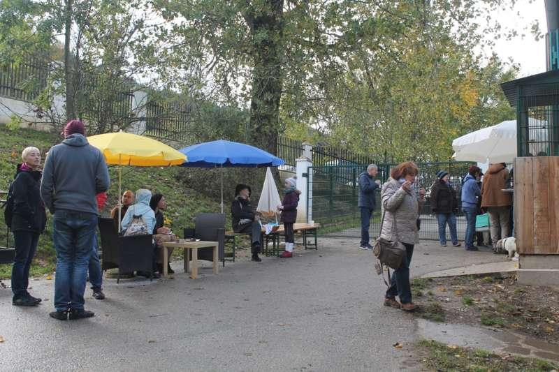Tag der offenen Tür im Tierparadies Schabenreith in Steinbach am Ziehberg - Bild 47
