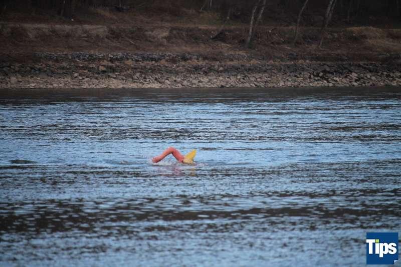 Sie haben es wieder getan: Eisschwimmer wagten sich bei Schönbühel in die Donau - Bild 11