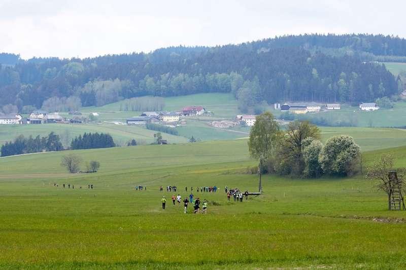 Wings for Life App Run in Vorderweißenbach - Bild 56