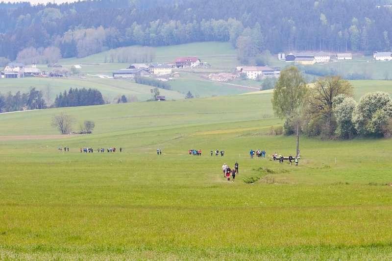 Wings for Life App Run in Vorderweißenbach - Bild 116