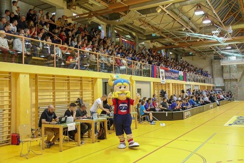 Linzer Handballer schaffen Klassenerhalt in Verlängerung - Bild 92
