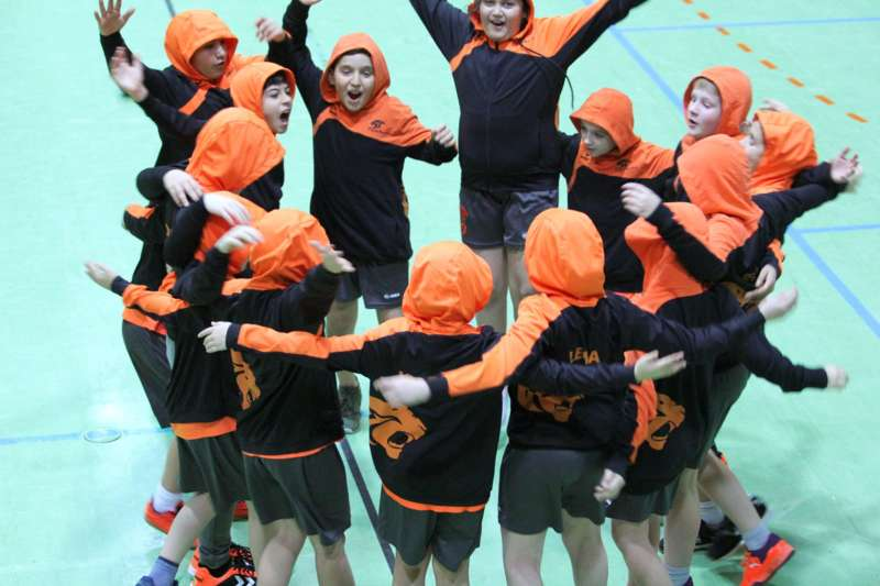 Eferdinger Panthers veranstalten größtes Jugendhandballturnier in Oberösterreich - Bild 1547157960