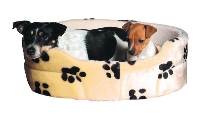 megazoo leonding und brunn am gebirge spenden im rahmen einer tauschaktion f r den wiener. Black Bedroom Furniture Sets. Home Design Ideas