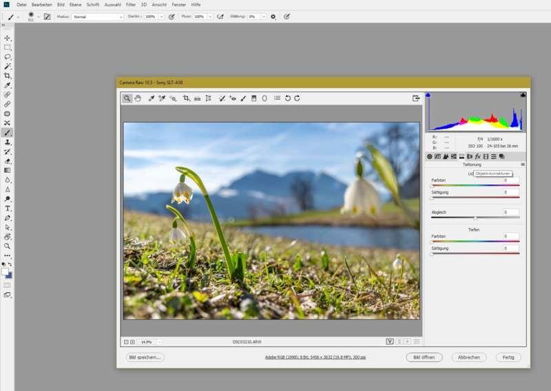 Workshop Fotografie und Bildbearbeitung - Bild 2