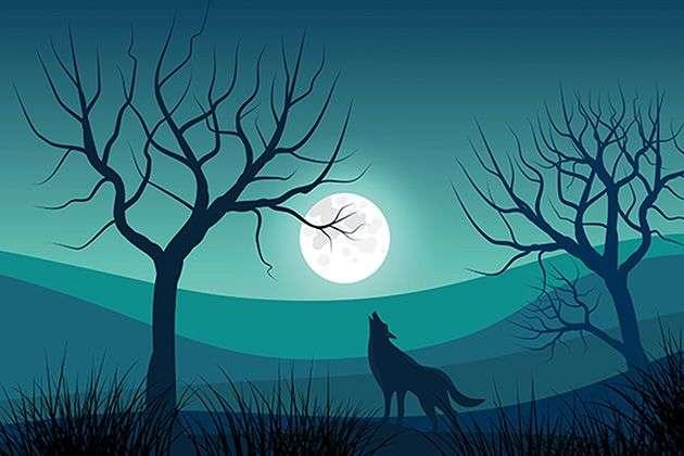 Peter und der Wolf - NEUER TERMIN - Bild 1585582745